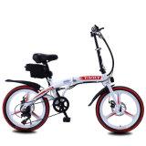 Best Selling Novo projeto dobrado Mountain Bicicletas eléctricas