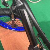 눈 산 남자를 위한 뚱뚱한 Ebike 350W 전기 자전거