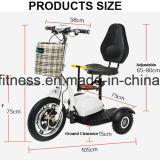 Bicicleta eléctrica de 3 ruedas plegable la vespa eléctrica para una más vieja gente