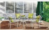 /Rattan ao ar livre/cadeira & tabela do Rattan da mobília hotel do jardim/Patio/ajustou-se (HS 1023C&HS6210DT)