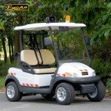2-местный Em тормоз электрическим полем для гольфа с лампа аварийной сигнализации (A1P2)