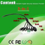 La red IP de la cámara de CCTV - Ojo de pez de la cámara IP WiFi