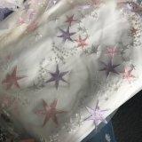 異なった星が付いている刺繍