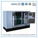 Générateur diesel de Tianjian Lovol 50kw avec la bonne qualité