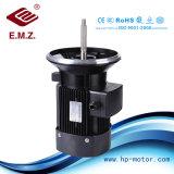 E. M. Z Zhengli motor especial para la bomba de acero inoxidable Eje largo monofásico y trifásico Motor eléctrico de la eficiencia