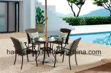 /Rattan extérieur/présidence et Tableau de rotin de meubles hôtel de jardin/patio a placé (HS 1035C&HS 6076DT)
