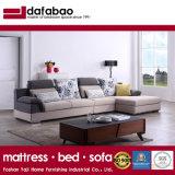 Novo design de móveis domésticos tecido moderno sofá (FB1145)