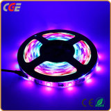 Fita LED flexível RGB impermeável (5050/30 LEDs) Corda de LED Light
