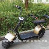 1500W Harleyの電気バイク18inchのタイヤ山の電気スクーター