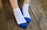 La pianura del cotone della caviglia dei bambini colpisce con forza i calzini giornalieri dei calzini del banco