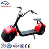 セリウムを使って前部ダンパー1000W Harleyの電気スクーターを使って