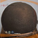 Brasilianisches Haar-Silk Spitzenperücke (PPG-c-0096)