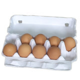 El reciclaje de residuos de papel Caja de huevo que hace la máquina (CE9600)