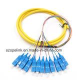 광섬유 Patchcord 섬유 연결관 12 코어 뭉치 떠꺼머리 Sc/Upc G652D