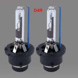 D4s d4r lâmpada de xénon 12V 35W do Farol HID