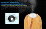 Shenzhen Dituo 200ML aroma difusor de aroma de óleo essencial(DT-1731)