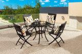 Présidence HS1260c extérieure/de jardin/patio rotin