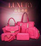 Schulter-Beutel-Kurier-Beutel-Handtasche-Schlüssel-Beutel-Handtaschen der Elegent Entwurfs-Dame-Handbag Shell Bag