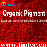 Colore rosso organico 122 (colore rosa rosso E10 del pigmento di Quinacridone)