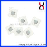 N35 de Sterke Magnetische Knopen van pvc van de Magneet van het Neodymium voor Kleding