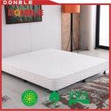 침실 가구를 위한 최신 판매 침대 박스 스프링 침대 기초