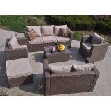 アセンブリテラスの屋外の円の庭の藤のテラスのソファー