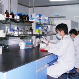 De Zuiverheid van 98% en Concurrerende CAS 50-56-6 van de Prijs Oxytocin Acetaat