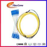 Barato Sc 12 Núcleos Sm Pigtail fibra FTTH em Fibra Óptica