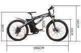 Vélo électrique Tde01 de montagne puissante élégante