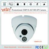 De binnen 1020m Draadloze Nok van het Web van de Camera van de Camera van WiFi IP Miniatuur