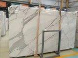 Белый / Calacatta мраморные плиты для кухни и ванной комнатой/стены и пол
