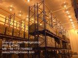 中国のモジュラー冷蔵室Manufaturer