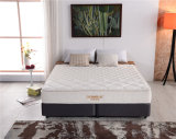 Full Size Spring Mattress with Foam Software