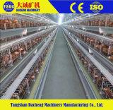 Poussin de ferme de poulet le petit met en cage le matériel (type le bâti de H)