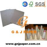 Papier de panneau grand de faisceau de qualité en feuille ou bobine à vendre