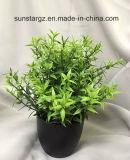 Hoja de Té PE macetas con plantas artificiales para la decoración de jardín (50458)