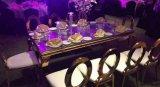 황금 색칠 의자를 식사하는 티타늄 백색 PU 가죽