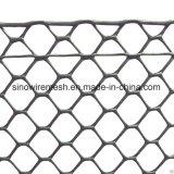 PVC家禽の網/鶏の網/六角形の金網