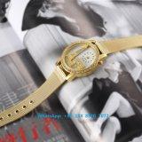 Het Horloge van de bevallige Vrouwen van het Kwarts met de Riem Fs555 van het Roestvrij staal
