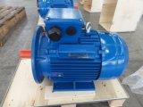 motor de CA eléctrico 6600V