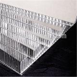 El panel de techo de aluminio perforado del panal (HR64)
