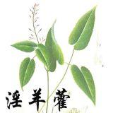 남자를 위한 중국 도매 초본 원료