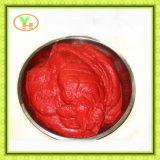 Fabbrica inscatolata Gino, pomodori, alimento inscatolato dell'inserimento di pomodoro