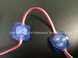신제품 LED 점 빛과 LED 화소 빛 좋은 품질 방수 IP65