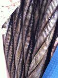 Компактированная веревочка стального провода 4vx48s+5FC Ungalvanized для висеть
