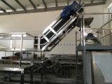 SU 304 무균 파파야 주스 또는 파파야 펄프 생산 기계