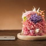Flor preservada para el regalo de boda del cumpleaños