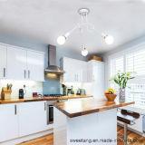 Moderner Leuchter-hängende Lampe für Haus als Innendekoration