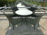 5 parti della tavola rotonda del braccio della mobilia di vimini delle presidenze che pranza insieme