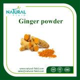 Poudre en bloc normale de gingembre de grande pureté